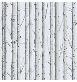 Vertical Woodland Silver Birch